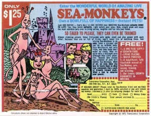 Sea Monkeys For a Retro Christmas Gift